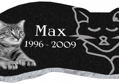 cat-marker_JB